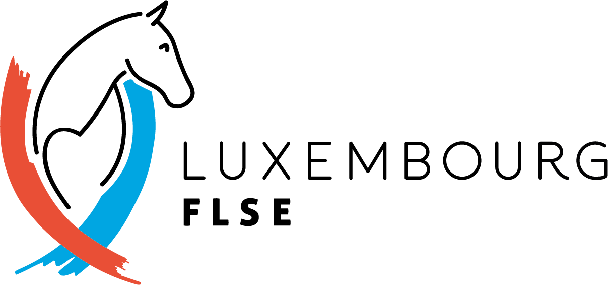 FLSE Logo